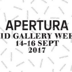 Apertura Madrid Gallery Weekend
